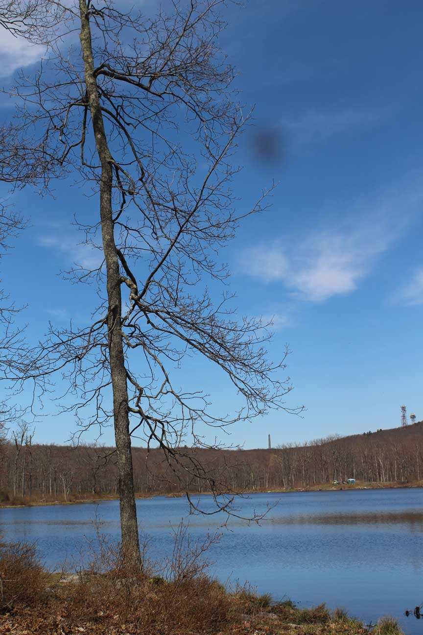 5th Annual Lake Clean Up – Friends of High Point State Park