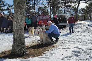Winter Festival @ High Point State Park   Sussex   New Jersey   United States